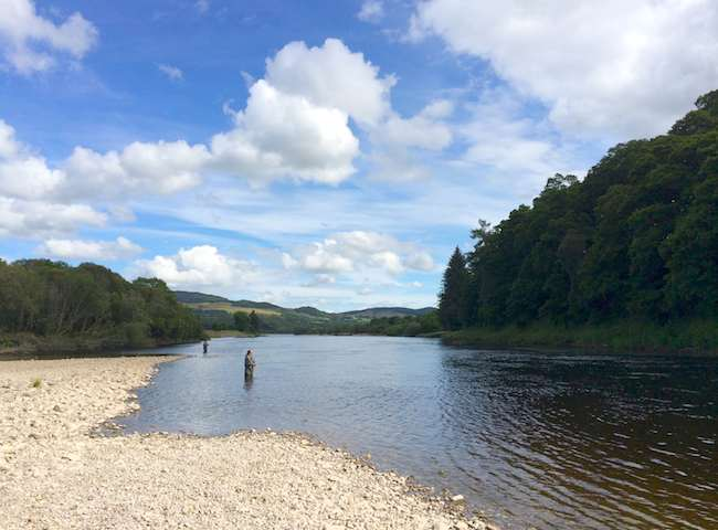 Fishing For Atlantic Salmon In Scotland